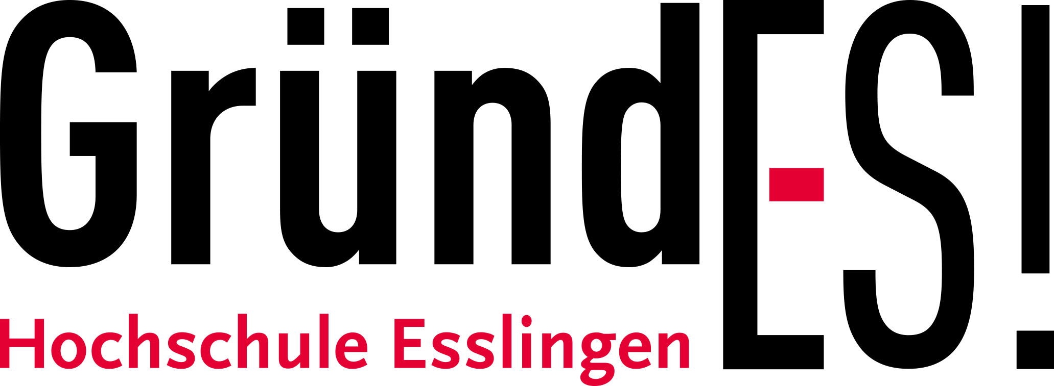 Community Partner de:hub, Logo Hochschule Esslingen